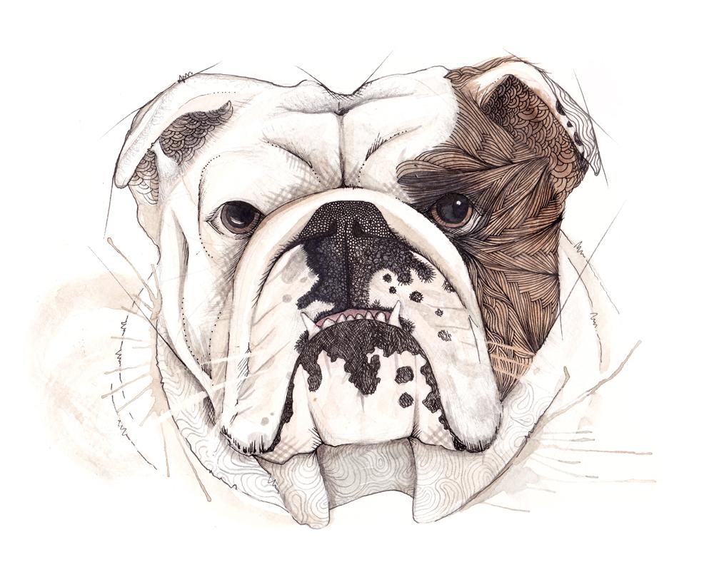 emmeselle_bulldog - llustration by Emmeselle